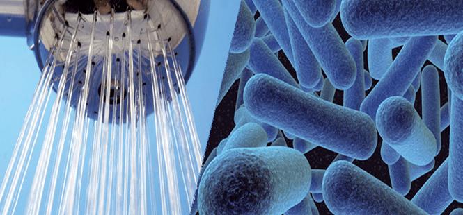 Prevención control Legionella