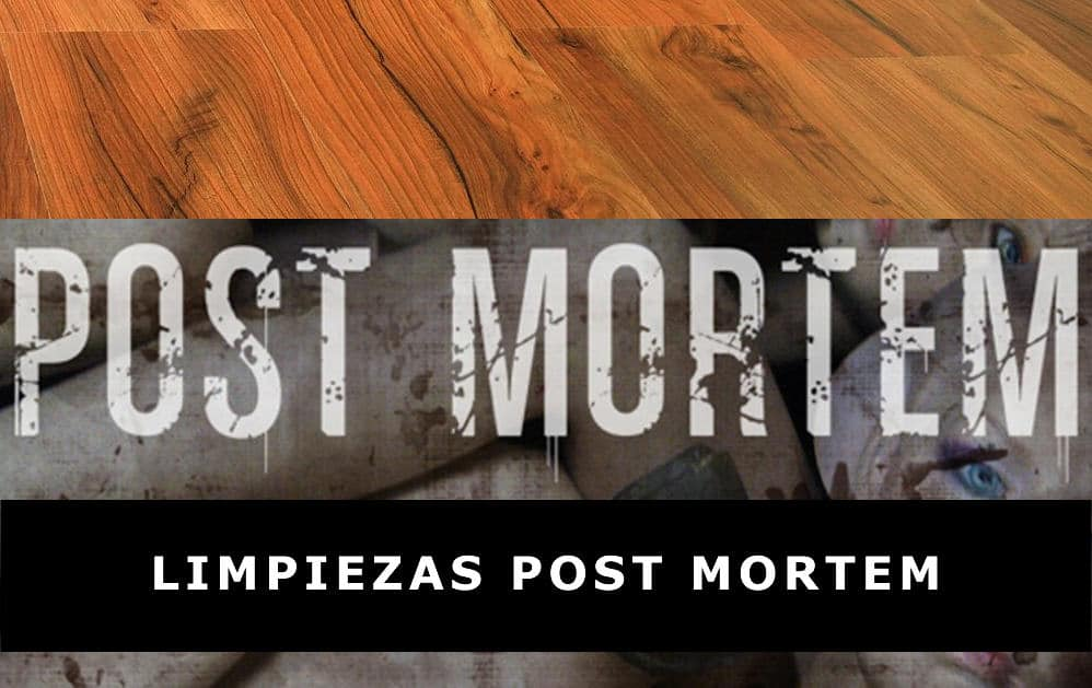 Limpiezas Post Mortem