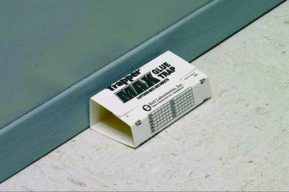 Trampa adhesiva insectos y roedores